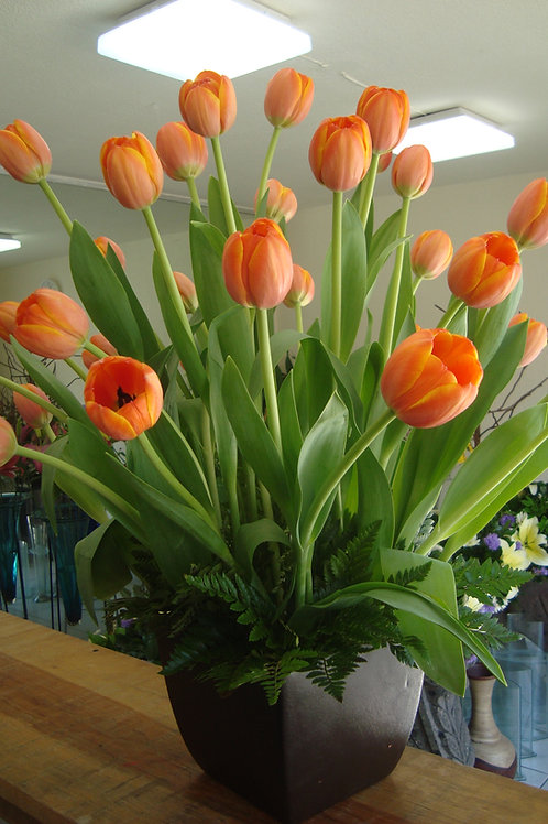 Tulipanes naranja