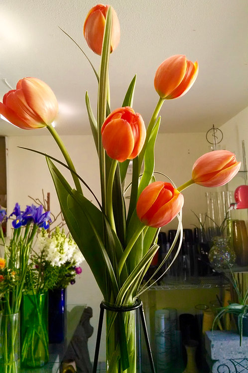 Violetero con tulipanes