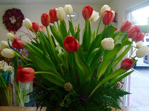 Tulipanes blanco y naranja