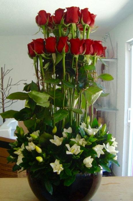 Rosas y Gardenias