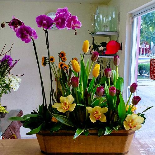 Orquídeas y tulipanes rústicos.