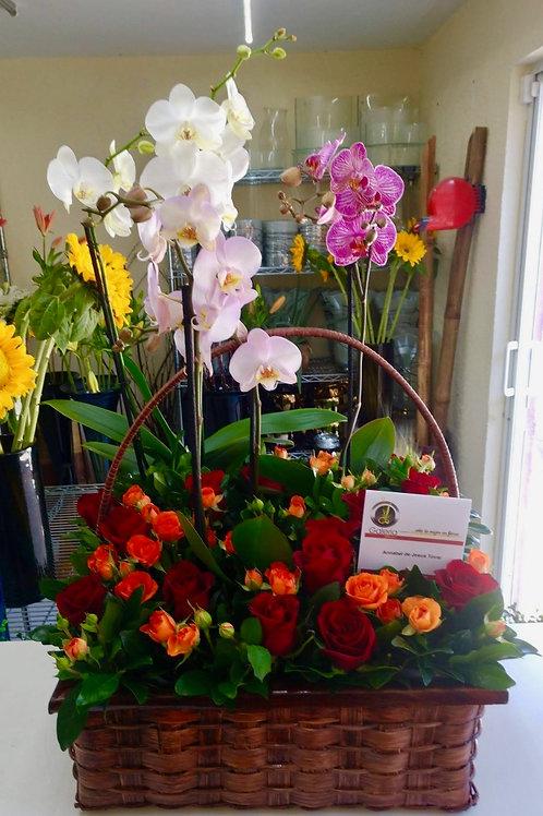 Cymbidium y rosas