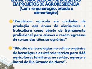 Oportunidade de trabalho remunerado temporário para profissionais da área agrícola