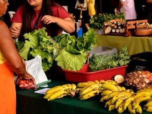Feira Agroecológica e Cultural da UFPI lança site para aproximar produtores(as) e consumidores(as)