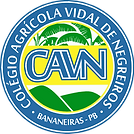 logo_cavn_4583x4568_300_dpi(1).png