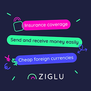 Ziglu-benefits.png