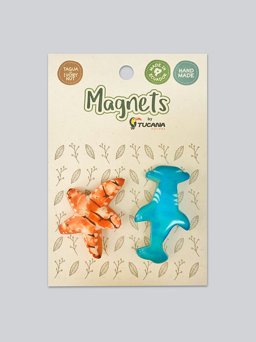 Tagua Magnets I 2 Magnets Set I Starfish & Shark