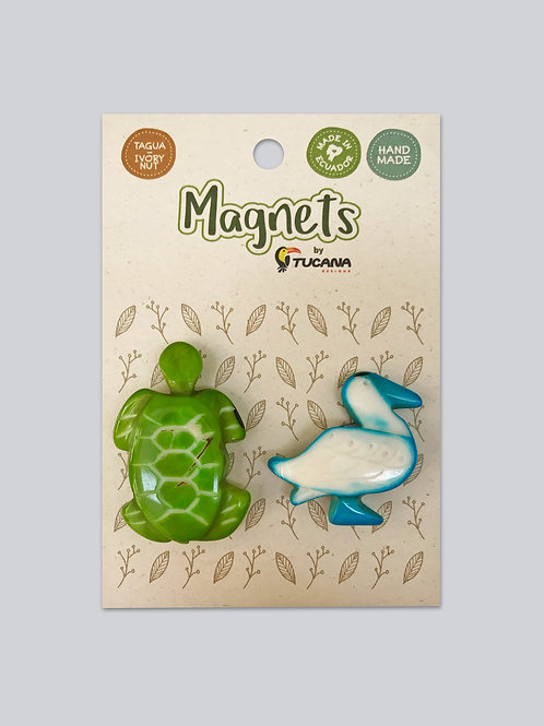 Tagua Magnets I 2 Magnets Set I Sea Turtle & Bluefoot Booby