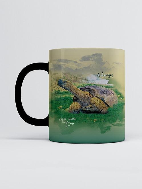 Artist Edition I Edgar Jacome I Galapagos Tortoise