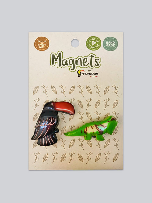 Tagua Magnets I 2 Magnets Set I Toucan & Iguana