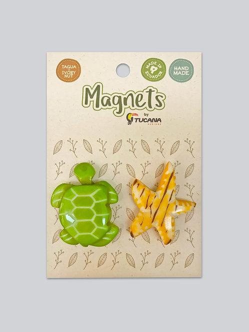 Tagua Magnets I 2 Magnets Set I Sea Turtle & Starfish
