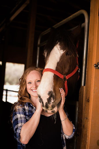 San Diego Horse Portrait Photographer