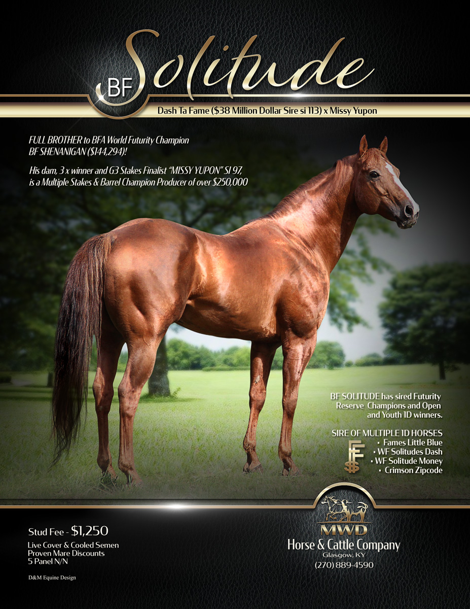 2020-BF-Solitude-Stallion-Ad-FINAL-for-w