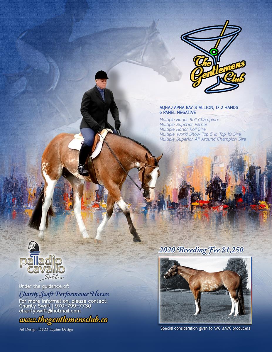 Equine Stallion Ads Flyers