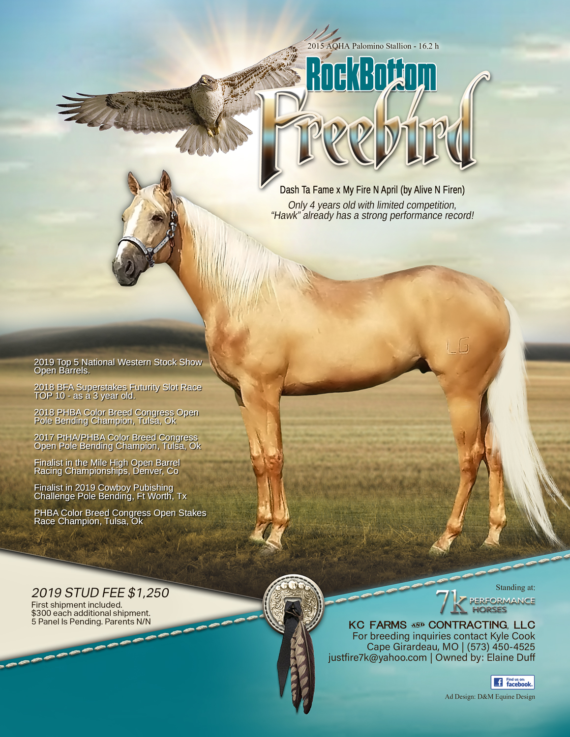 D&M Equine Design | Horse Marketing | Website & Print Ads