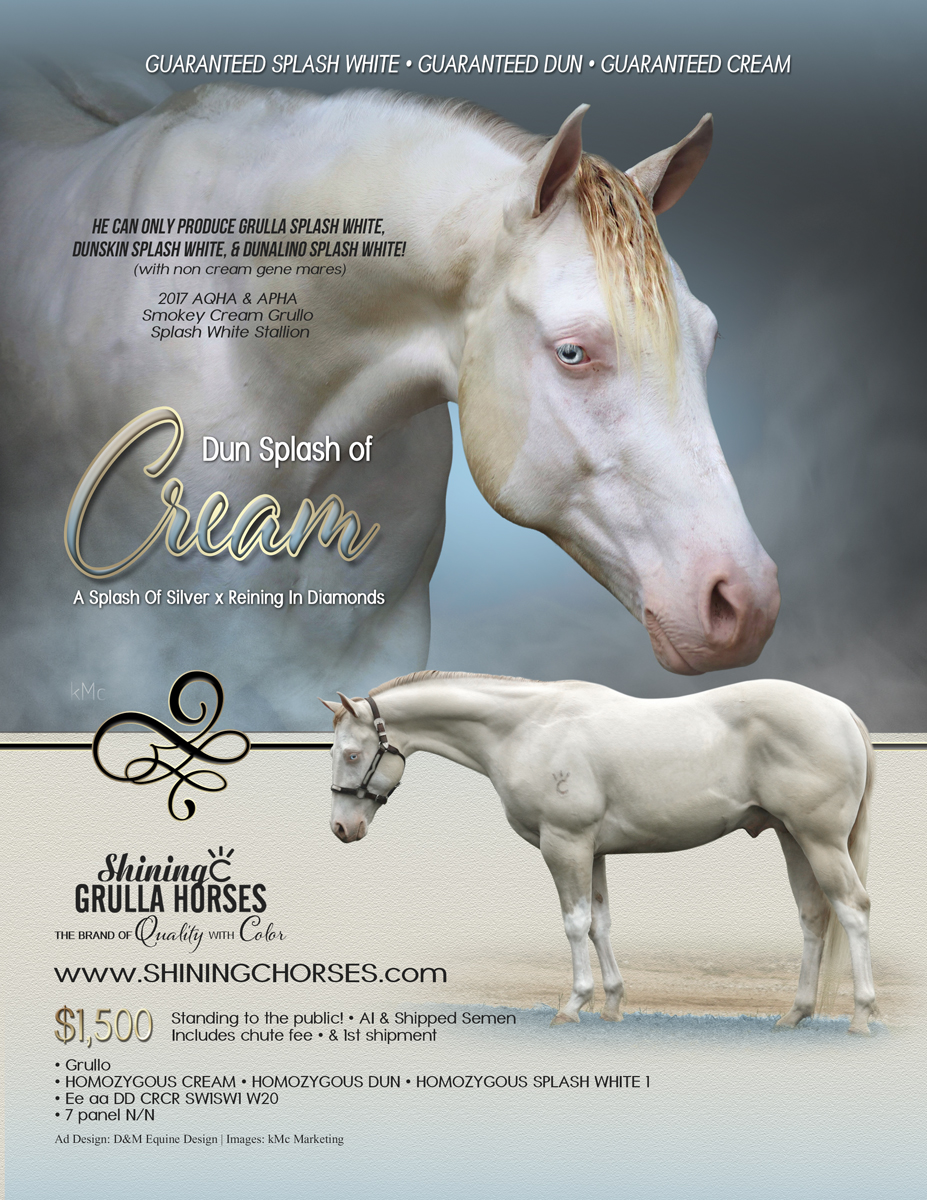 2020 dun splash of cream stallion ad FIN