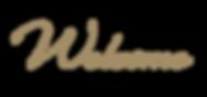 Equine Website, Print, & Logo Marketing