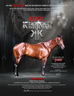 Equine Publication Ads