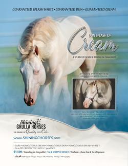 2021-dun-splash-of-cream-stallion-ad-final