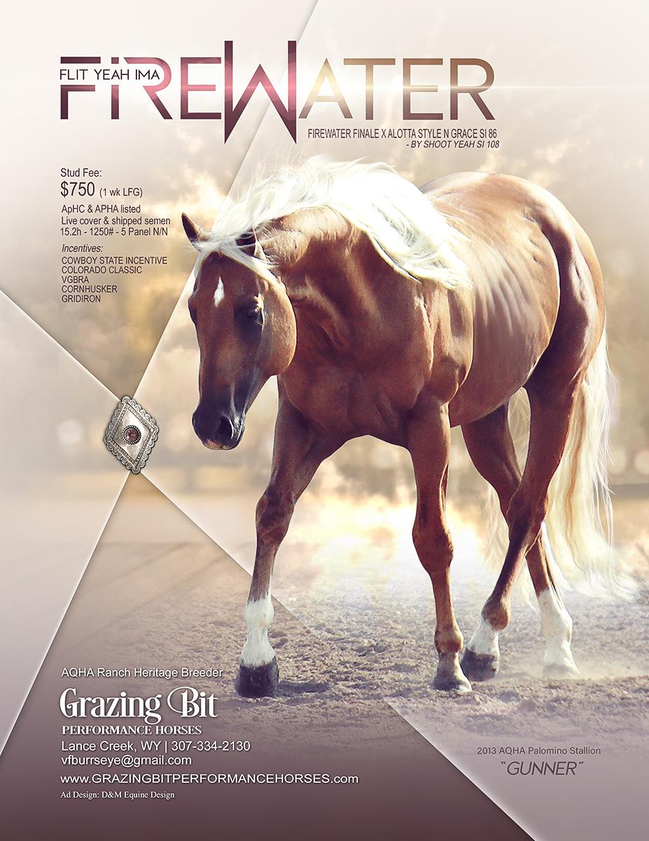 Equine Barrel Horse Stallion Ads