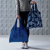 grocery-bag_2x-95169ecc5c95a4e137ba417a9