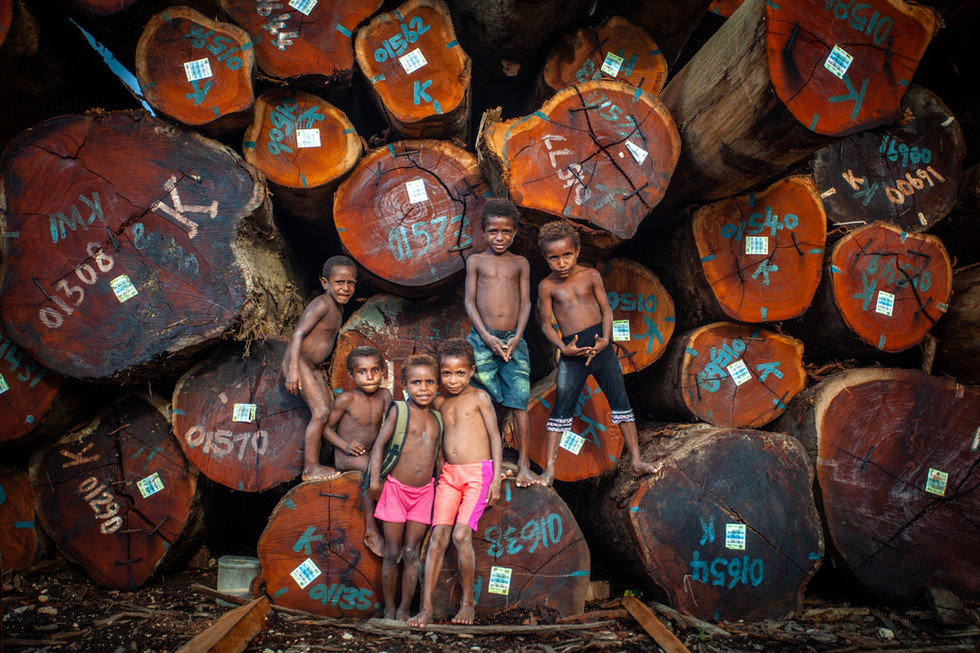 """As thunder rumbled across the valley, the children assured me it wasn't going to rain.  """"Oh, that noise? It is the big trees being loaded onto the ships."""" A few minutes later we met several naked children playing in front of enormous felled trees. Their inheritance, now neatly stacked and labeled for export.  As the rampant deforestation of Papua New Guinea for palm oil continues, it is putting their future - and the climate - at risk."""