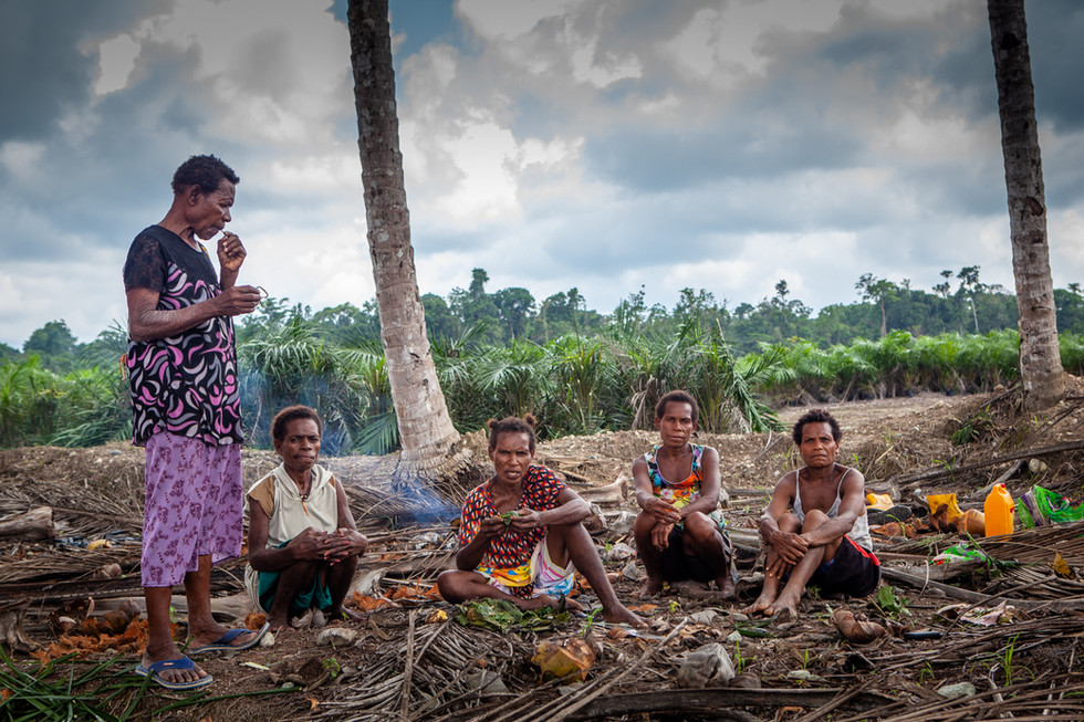 Tribes are often paid far below market value for their land.  In one instance on the West Papua side of the island, the Indonesian government paid a klan only $.65 USD per hectare for 14.2 square kilometers ($923 USD for 3508.896 acres) of forest land.
