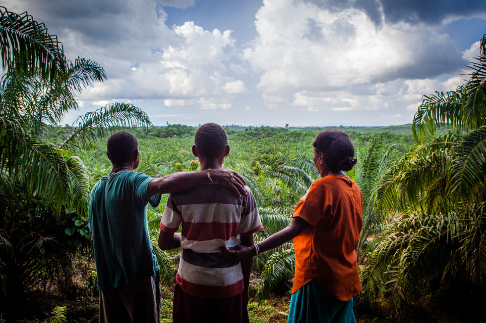 """The Gisim family overlooks what used to be their family's land and is now an industrial palm oil plantation.  In 2006, at the age of four, oldest son Manu Gisim was persuaded to """"sign a contract"""" with a thumbprint since he could not write, with PT HIP (an Indonesian Corporation).  The contract said if his father died, the next generation released their rights to the land. The contract was upheld in an Indonesian court.  While the family tried to preserve areas of forest and erected blockades to stop land clearance, the company bulldozed and cleared more land than agreed. Thus far, none of the benefits promised – such as a house and schooling – have been honored.  The boy at the center is now 13 years old and the family is subsistence farming on the edge of the property."""