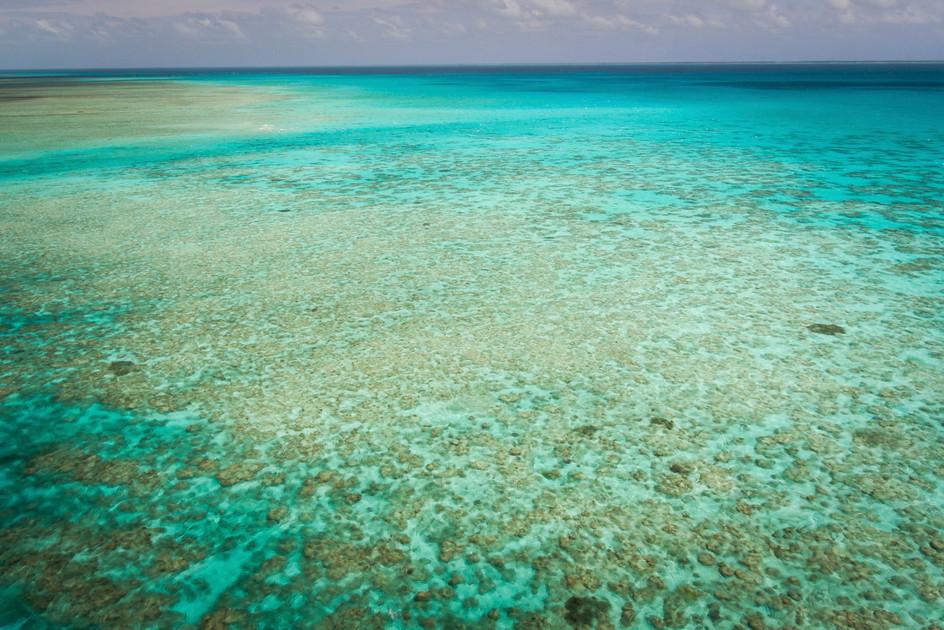 046_45Corals in the lagoon by Abaiang Island, Kiribati_photo credit Sarah Fretwell.jpg