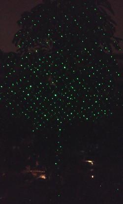 LASER TREE 1