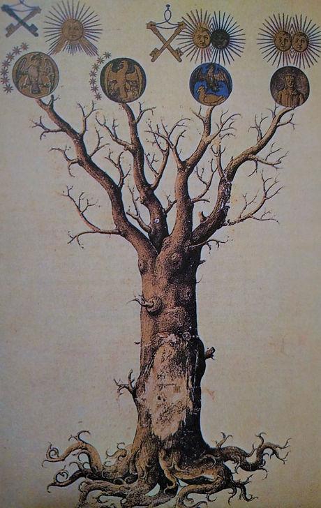 Tree from Symbol book 2 (2).jpg