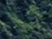 Screen Shot 2021-01-18 at 2.42.18 PM.png