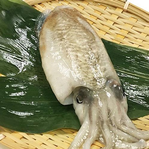 Sumi Ika - Cuttlefish