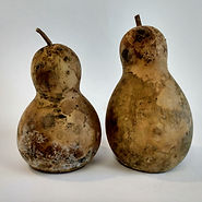 Chinese Bottle Gourd