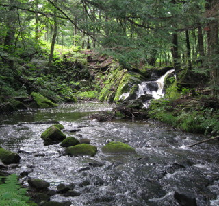 4-ruisseau.jpg