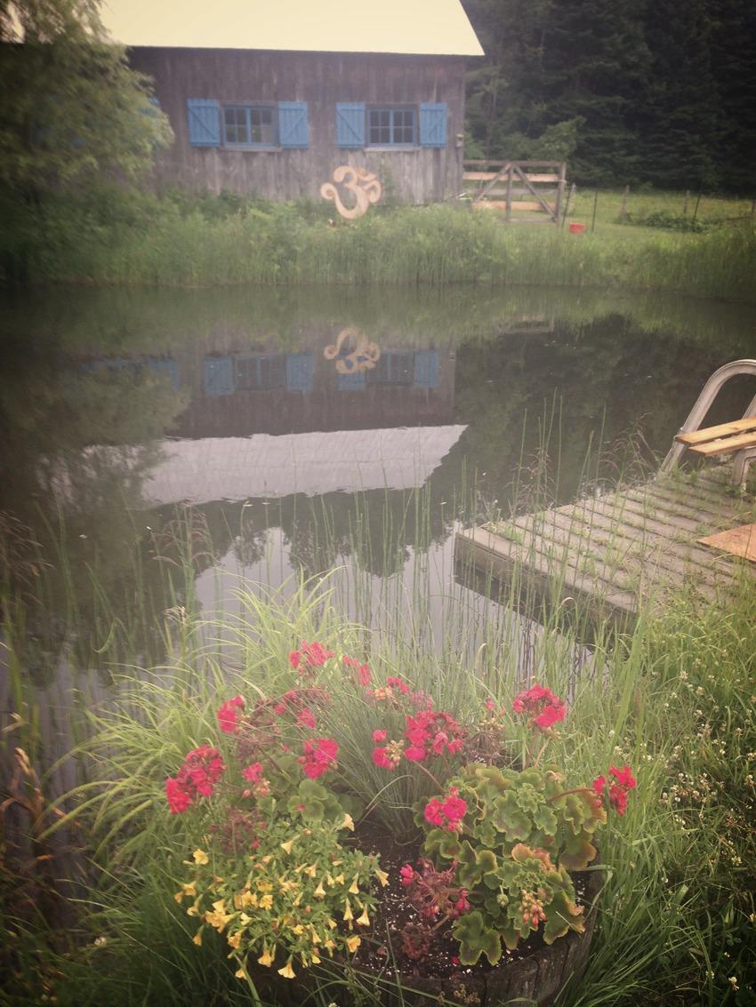 lac-avec-fleur-web_edited