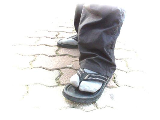 Socks in Thongs