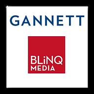 gannett-blinq2.png