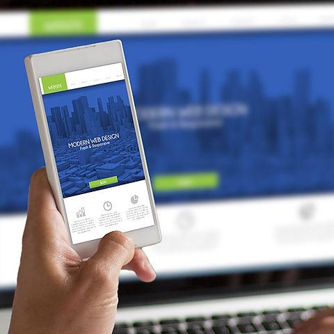 liq-web-design-img4.jpg