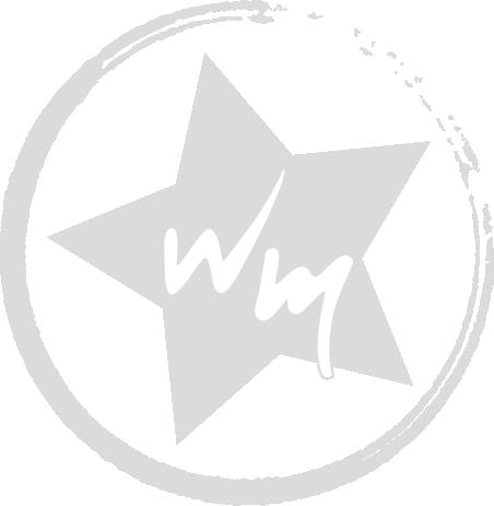 Stern_Wasserzeichen[3].png