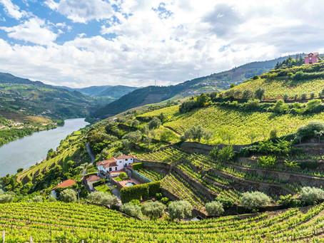 ポルトガル・プレミアムワイン