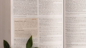 What is Goodness According to the Bible?