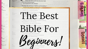 The Best Bible for Beginners!