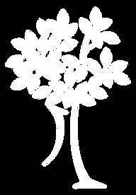 white-icon.png