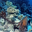 Thumbnail: Octopus Garden (Fresh Marine & Musk)