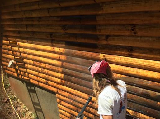 Michael stripping a log home