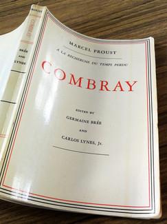 En 2020, Olivier Dhénin adapte sous forme de dialogue la première partie du premier livre de Marcel Proust DU CÔTÉ DE CHEZ SWANN : COMBRAY