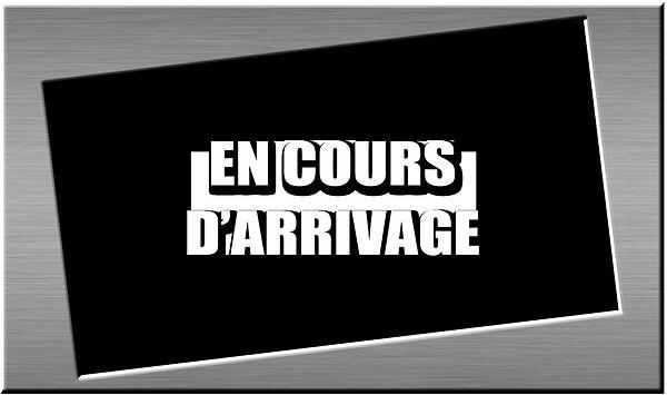 EN COURS D'ARRIVAGE.jpg