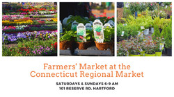 Regional Market Logo