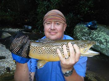 brown trout.JPG